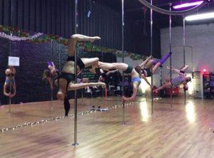 pole bodies